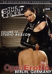 The Domina Files Vol. 15 (SPI Media)
