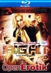 Angelina Armani The Big Hit (Digital Playground - Blu-ray Disc)