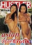Asian fever Vol 12