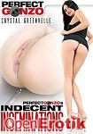 Perfect Gonzos Indecent Inseminations (Perfect Gonzo)