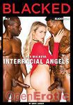 Interracial Angels Vol. 2 (Jules Jordan Video - Blacked)